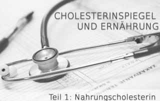 Cholesterinspiegel und Ernährung Teil 1 Version 2