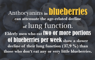 Blueberries healthy lung anti aging Blaubeeren gesund Anthocyans Anthocyane