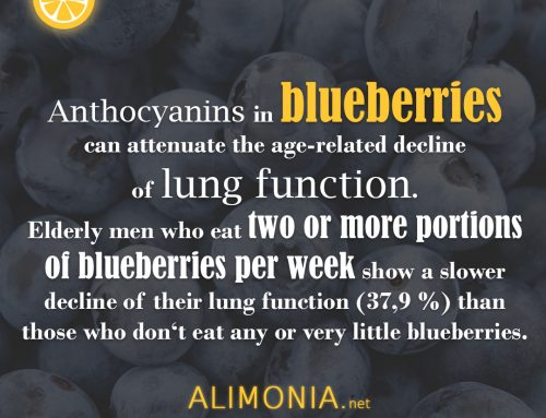 Alimoniafact #4 – Did you know that blueberries are good for your lungs?