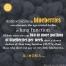 Blueberries healthy lung anti aging Blaubeeren gesund Anthocyans Anthocyane