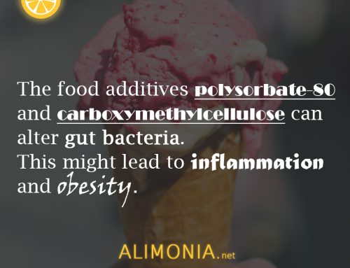 Alimoniafact #6 – 2 commonly used food additives can lead to obesity and inflammation