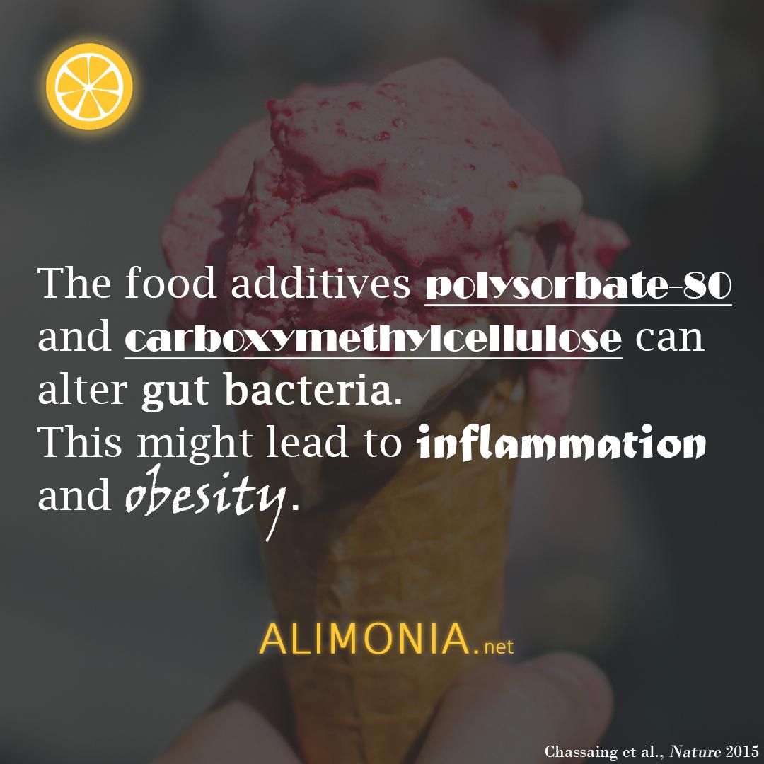 Food additives obesity inflammation polysorbate-80 Emulgatoren Übergewicht Carboxymethylcellulose Entzündung