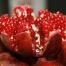 Antioxidantien schädlich gesund